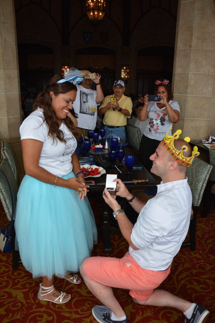 Proposal Ideas Cinderellas castle,Disney world