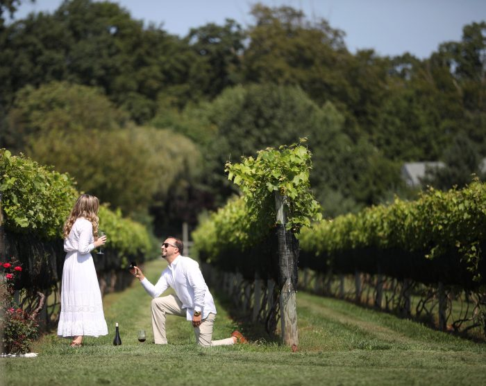 Marriage Proposal Ideas in Beneduce Winery in NJ
