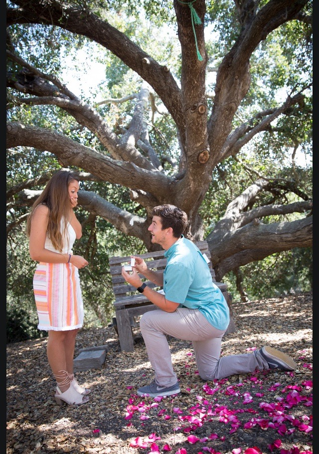 Engagement Proposal Ideas in Santa Barbara, California