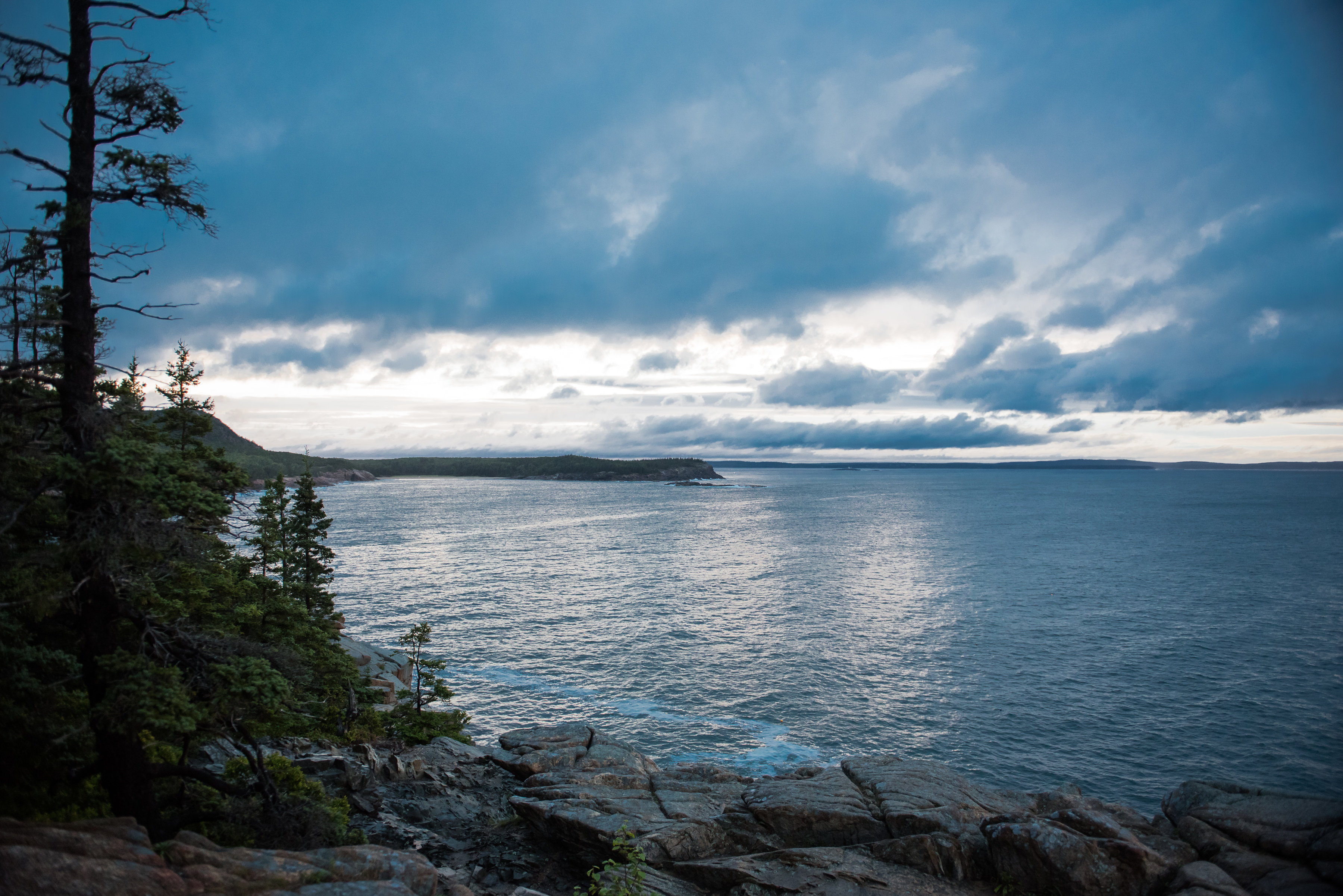 Wedding Proposal Ideas in Bar Harbor, Maine