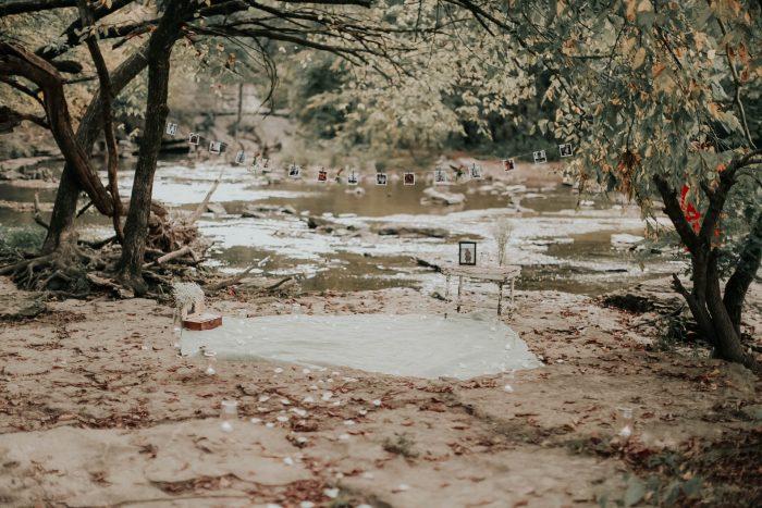 Proposal Ideas Cherokee Park, Louisville KY