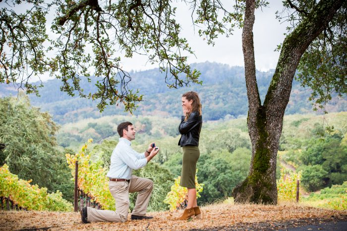 Engagement Proposal Ideas in Buehler Vineyards, Napa, California