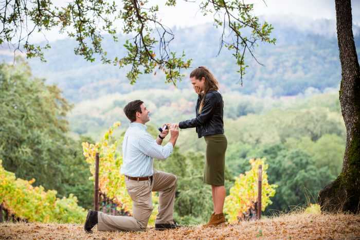 Wedding Proposal Ideas in Buehler Vineyards, Napa, California