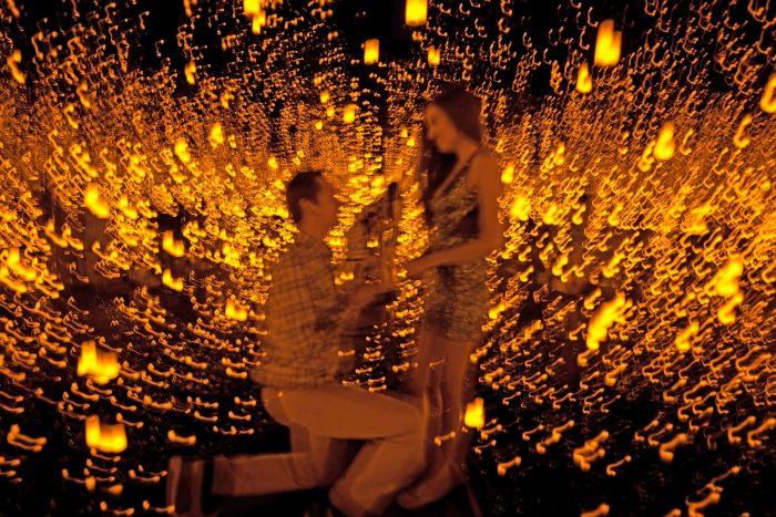 Proposal Ideas Yayoi Kusama exhibit at Seattle Art Museum
