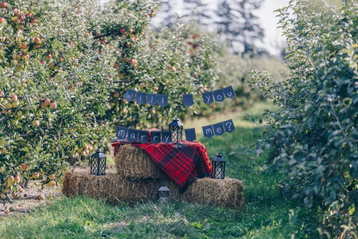 Engagement Proposal Ideas in Blakes Apple Orchard