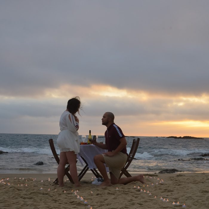 Proposal Ideas Laguna beach California