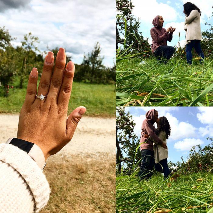 Where to Propose in Averill Farm Apple Orchard