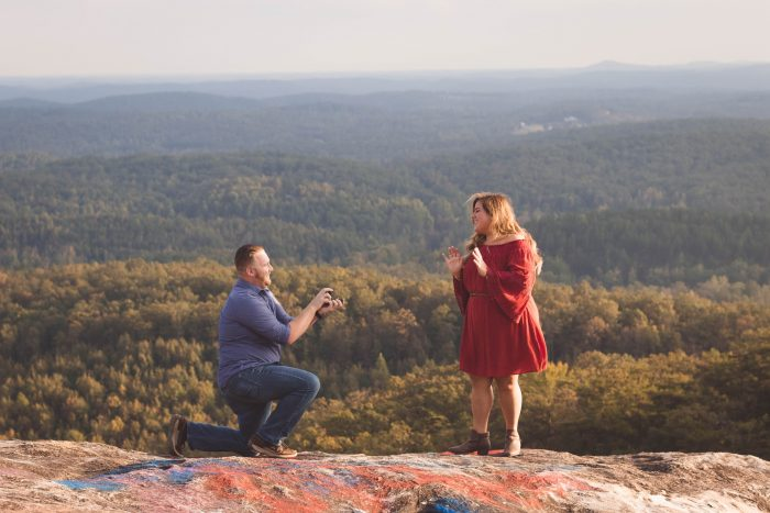 Proposal Ideas Greenville, South Carolina