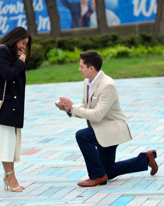 Engagement Proposal Ideas in Spirit of Music Garden - Grant Park: Chicago, Illinois