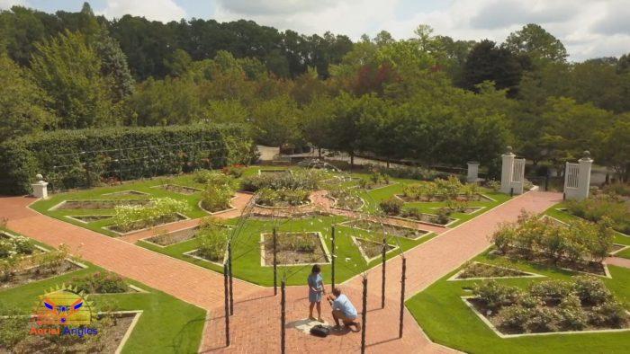 Where to Propose in Birmingham Botanical Gardens