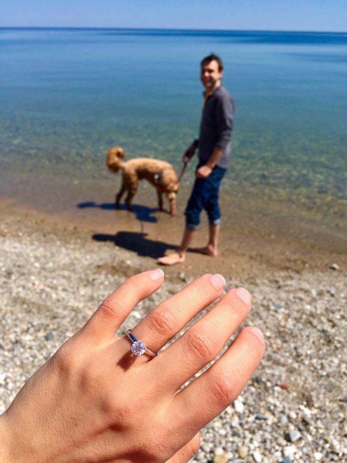 Wedding Proposal Ideas in Seven Bridges, South Milwaukee, WI