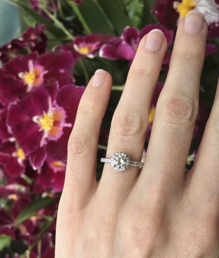 Where to Propose in Longwood Gardens in Kennett Square, PA