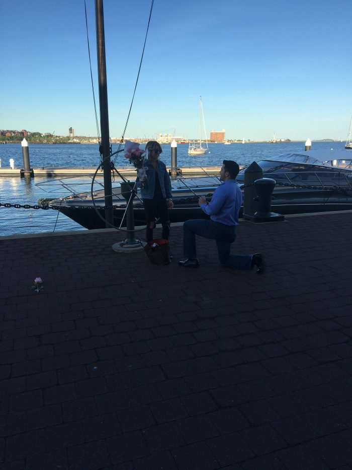 Wedding Proposal Ideas in Boston Yatch Haven and Marina