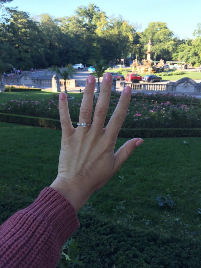 Where to Propose in The Bronx Zoo, New York