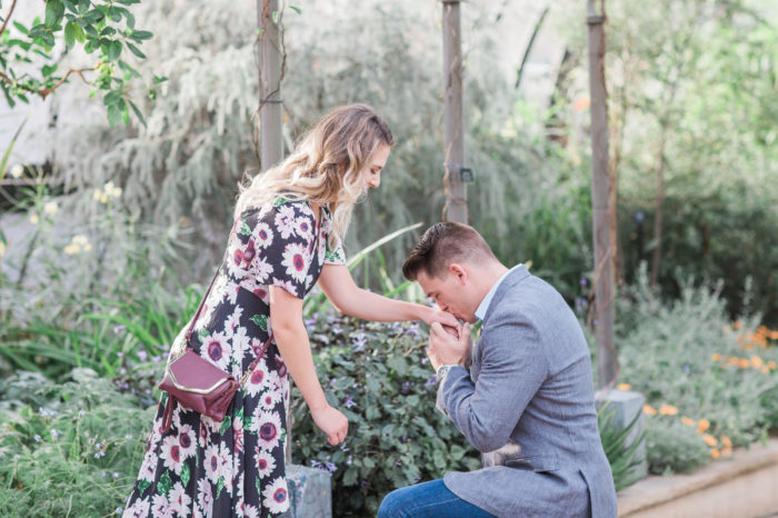 Marriage Proposal Ideas in Longwood Gardens