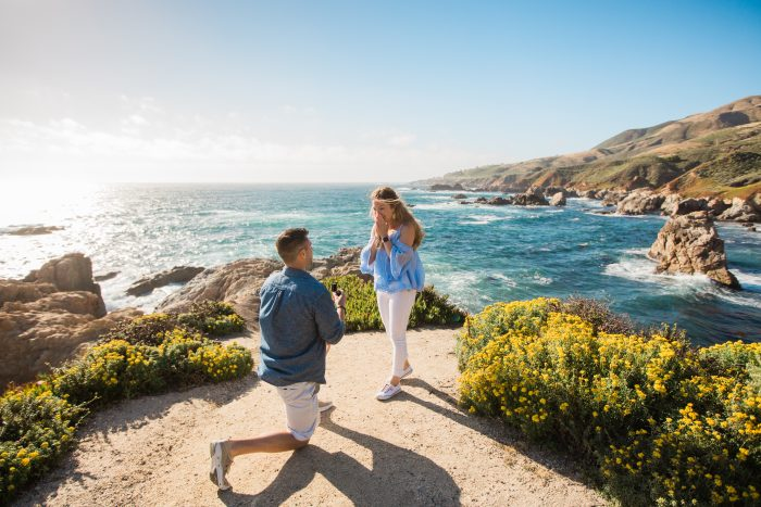 Wedding Proposal Ideas in Garrapata State Park in California