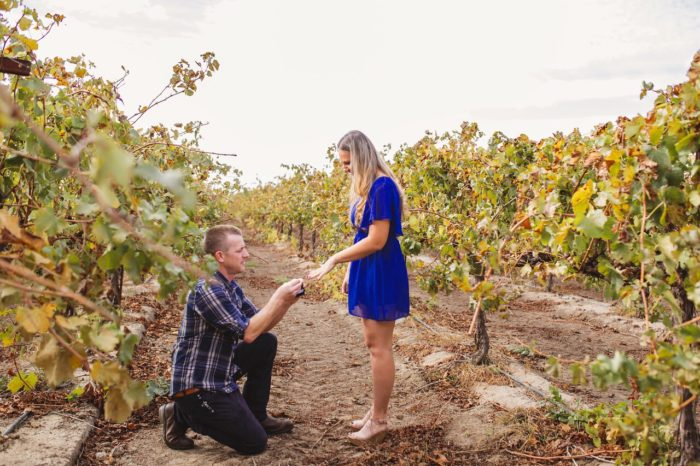 Katia and Nathan's Engagement in Old Sugar Mill