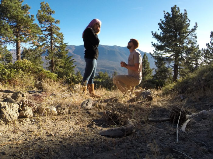 Wedding Proposal Ideas in Big Bear, CA