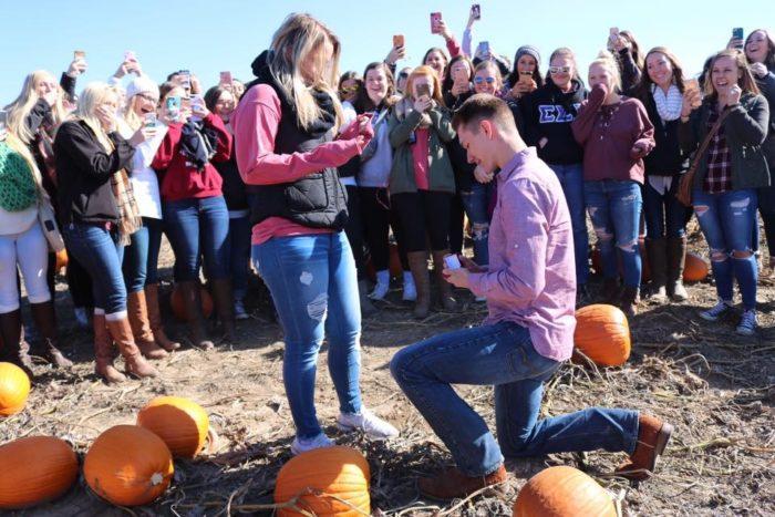 Wedding Proposal Ideas in Valas Pumpkin Patch