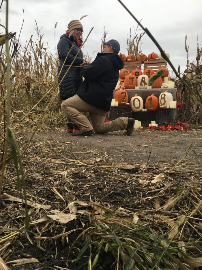 Where to Propose in Pumkinville Corn Maze