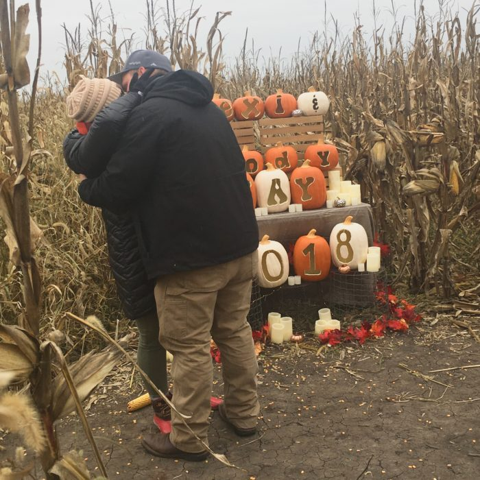 Proposal Ideas Pumkinville Corn Maze