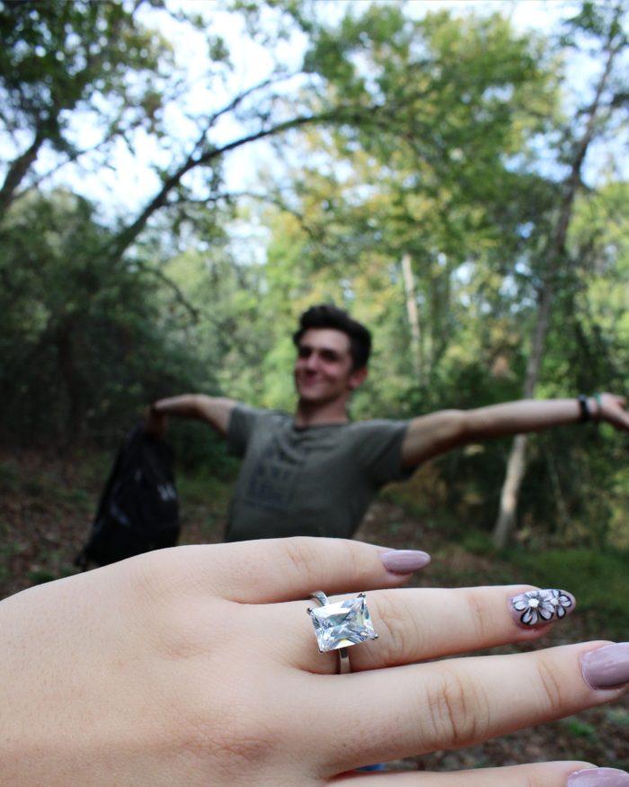 Engagement Proposal Ideas in Cedar Falls Park
