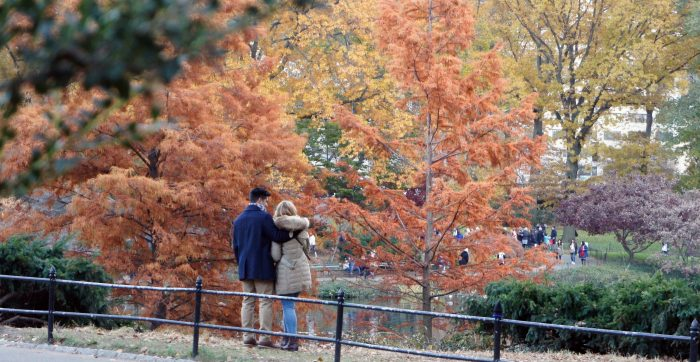 Engagement Proposal Ideas in Central Park NYC