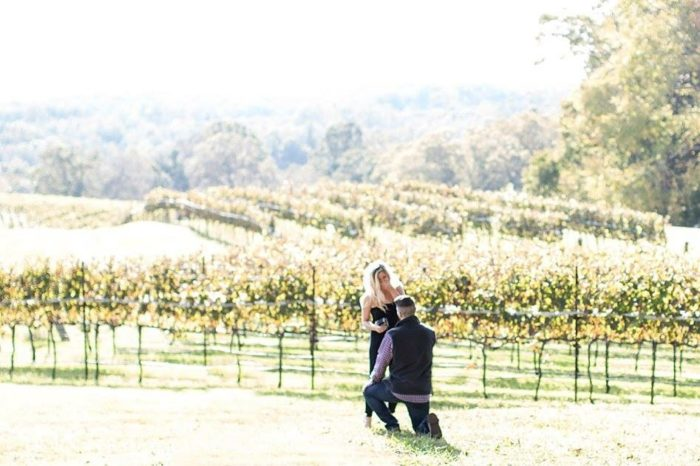 Where to Propose in Monteluce Winery