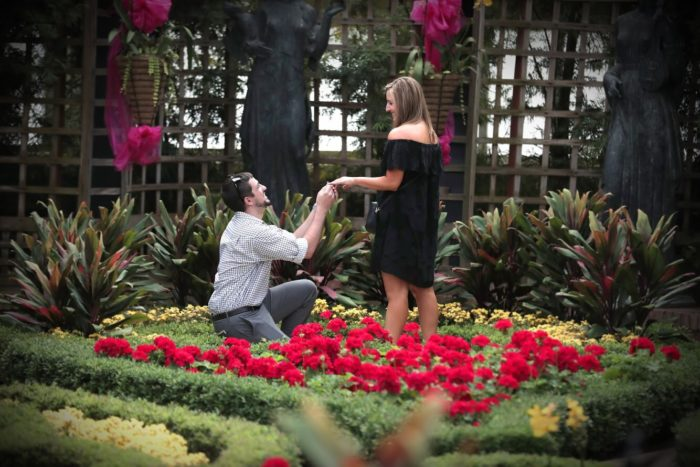 Proposal Ideas Phipps Conservatory & Botanical Gardens, Pittsburgh, PA