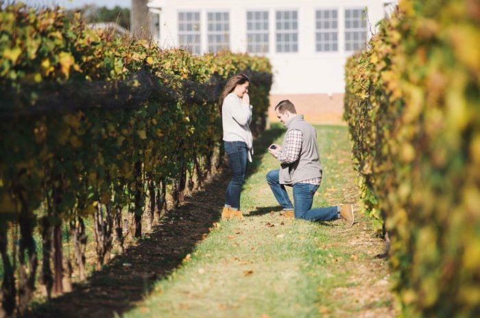 Katie's Proposal in Old Westminster Winery