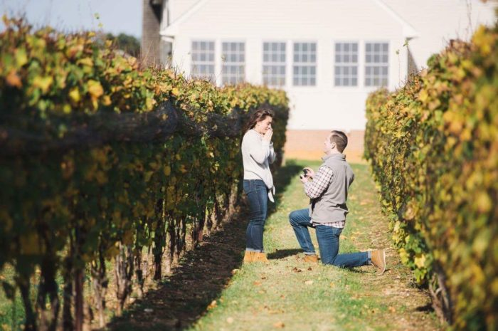 Engagement Proposal Ideas in Old Westminster Winery