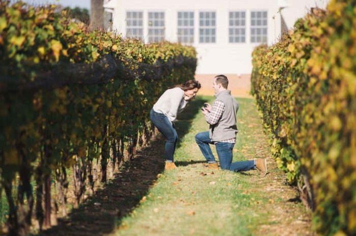 Wedding Proposal Ideas in Old Westminster Winery