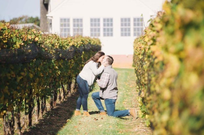 Marriage Proposal Ideas in Old Westminster Winery