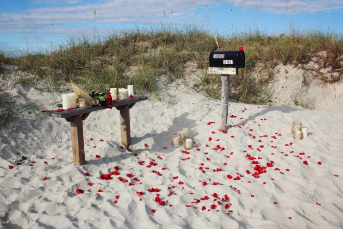 Marriage Proposal Ideas in Bird Island, NC