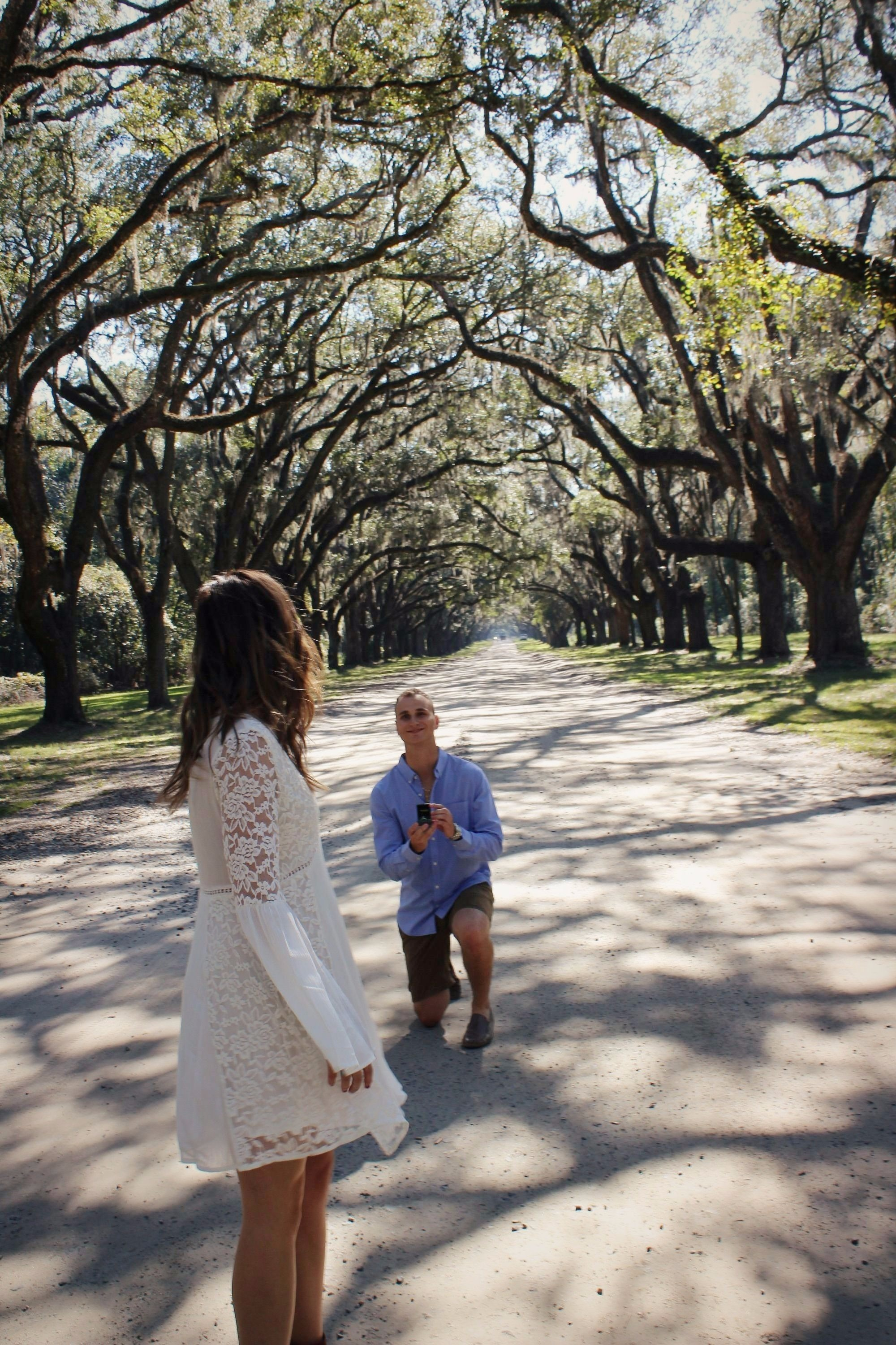 Wedding Proposal Ideas in Wormsloe Plantation, Savannah, Georgia