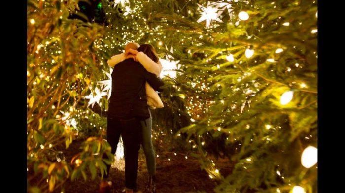 Wedding Proposal Ideas in Biltmore Estate