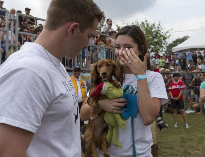 Engagement Proposal Ideas in Buda Weenie Dog Races