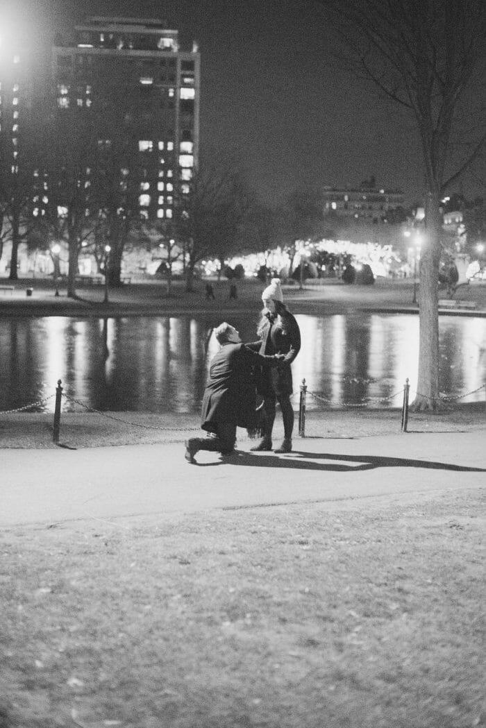 Engagement Proposal Ideas in Public Garden, Boston MA.