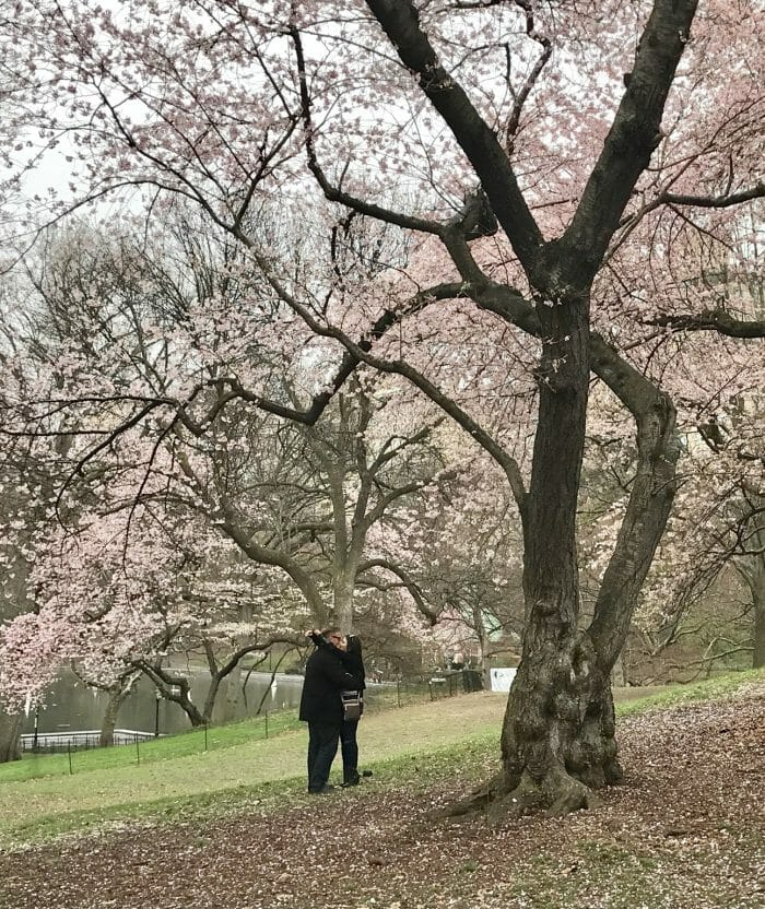 Marriage Proposal Ideas in Central Park, New York