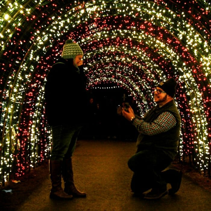 Wedding Proposal Ideas in The Oregon Gardens
