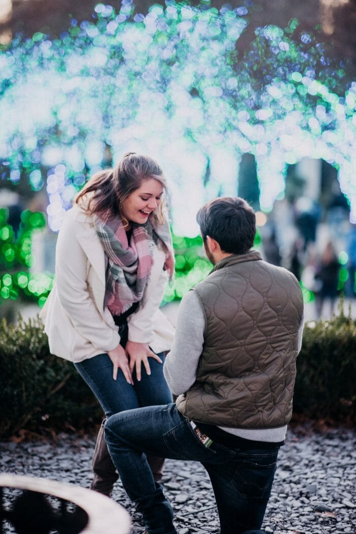 Engagement Proposal Ideas in Atlanta Botanical Gardens