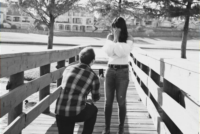 Engagement Proposal Ideas in Lake Avalon