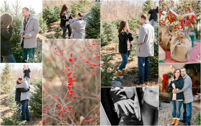 Stephanie and Andrew's Engagement in Winterberry Christmas Tree Farm