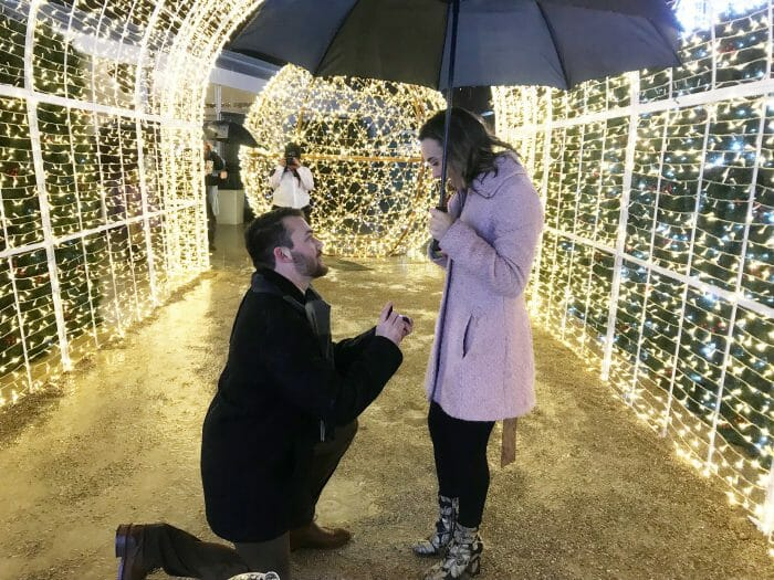 Engagement Proposal Ideas in Enchant Arlington, Texas