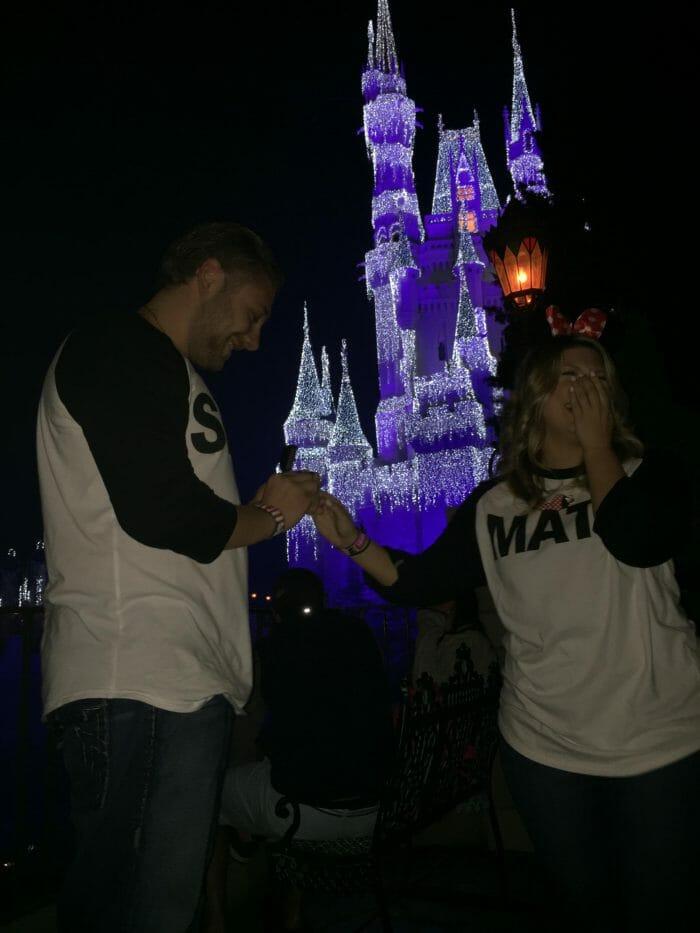Proposal Ideas Cinderella's Castle in Magic Kingdom (Disney World)