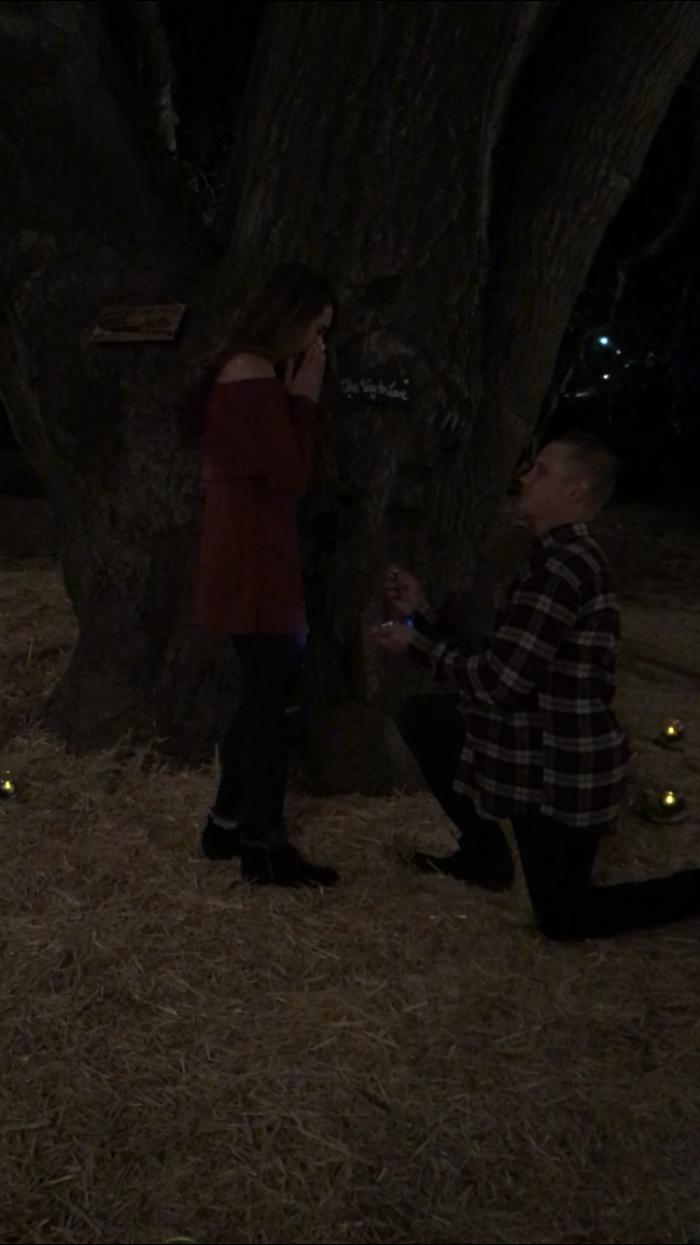 Wedding Proposal Ideas in Wickered farm