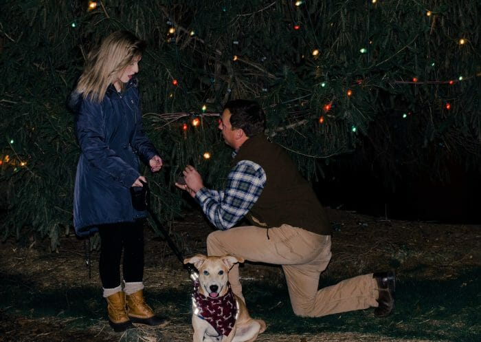 Brittany's Proposal in McAdenville Christmas Town USA
