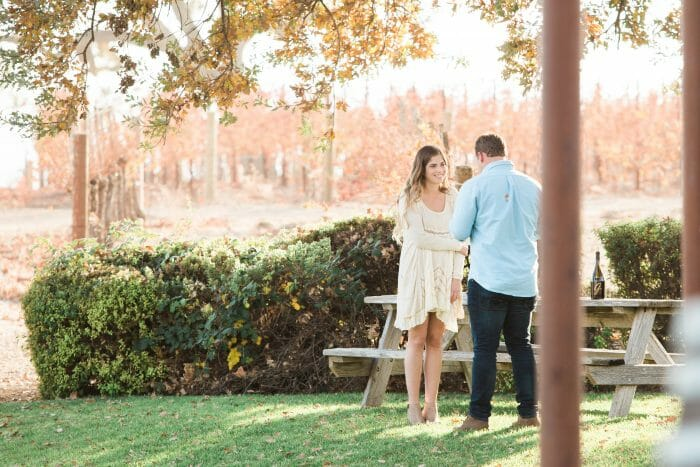 Hannah's Proposal in Gainey Winery