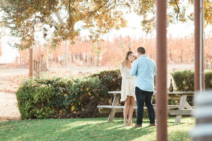 Hannah and Nick's Engagement in Gainey Winery