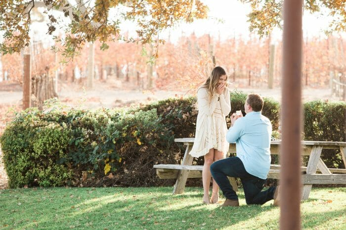 Marriage Proposal Ideas in Gainey Winery